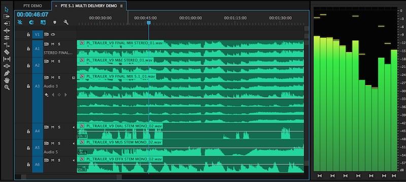 Adobe Premiere Pro Track Multichannel Delivery