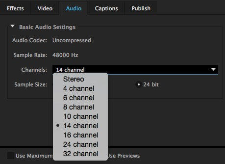 Adobe Premiere Pro Track Export Media Settings
