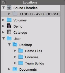 Pro-Tools-12-Sound-Libraries-Demo-Folder.jpg