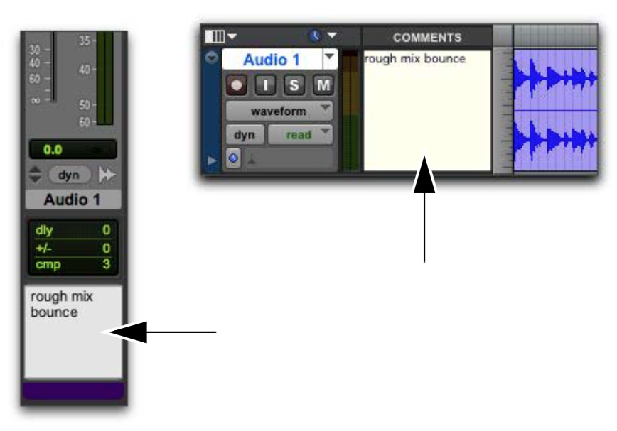 Track Comments in Pro Tools