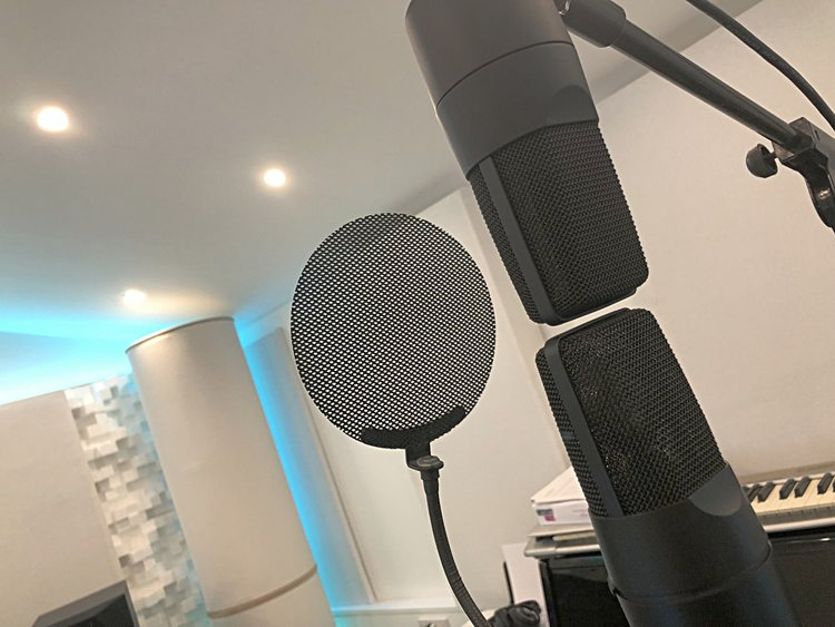 se+x1+ribbon+condenser+microphrone+test+shootout+difference+vocals.jpg