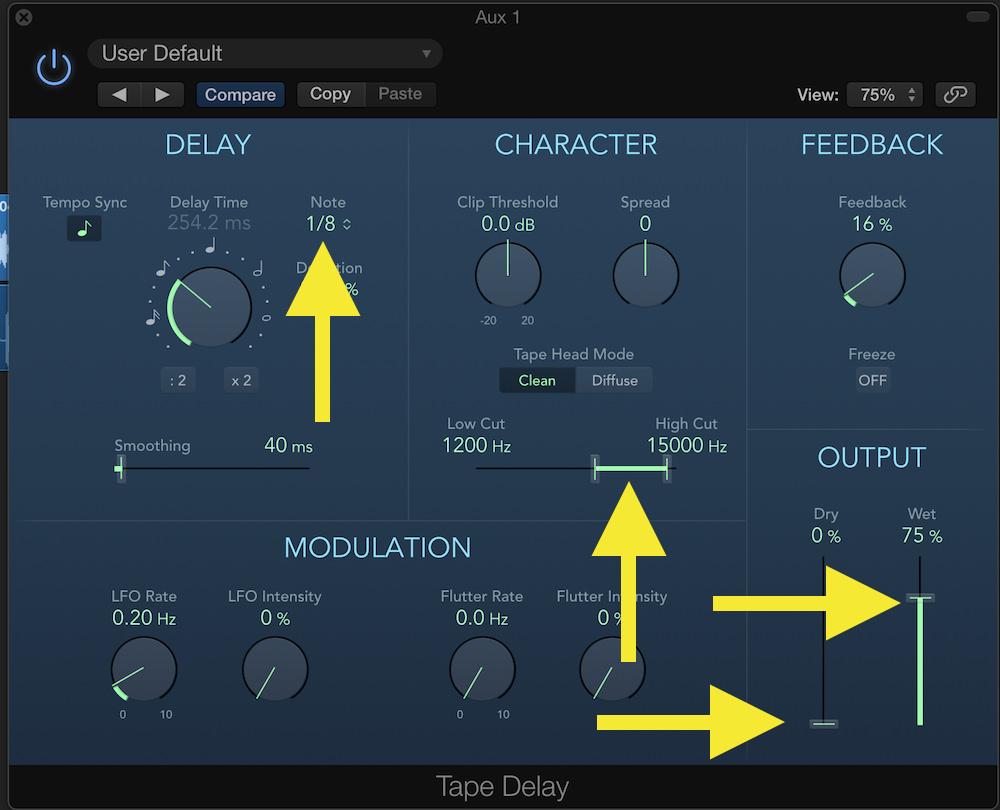 Logic Pro Expansion 02 Tape Delay Settings