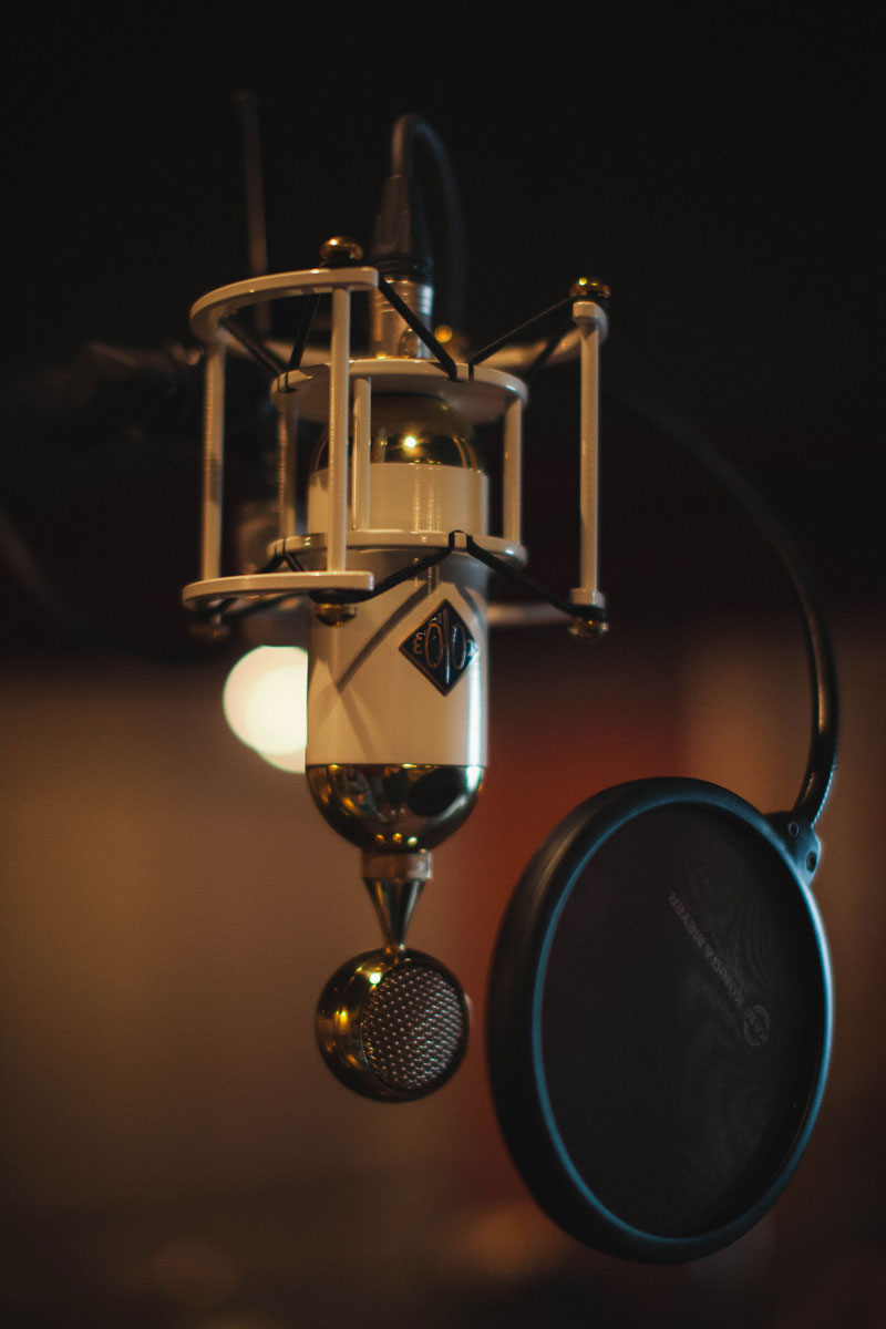 Soyuz SU-019 Tube Condenser mic for vocals.