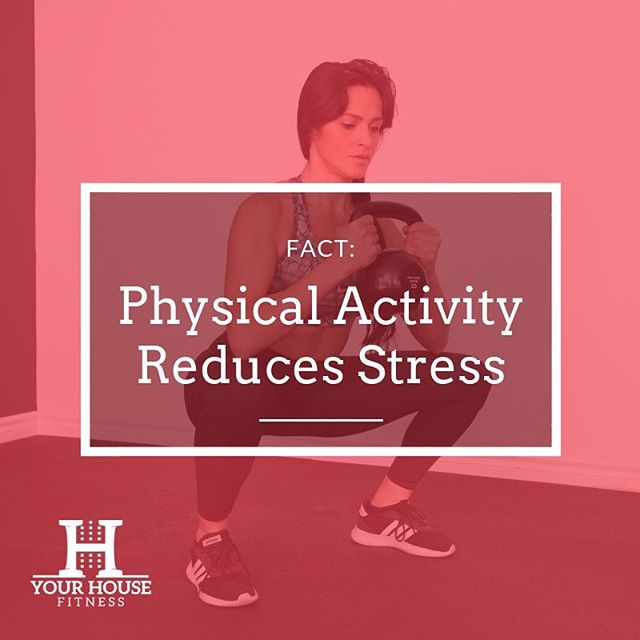 Exercise helps to relieve harmful stress!