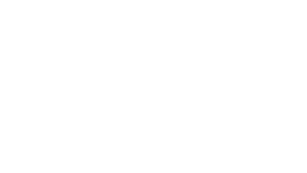 PACE Performance Consulting