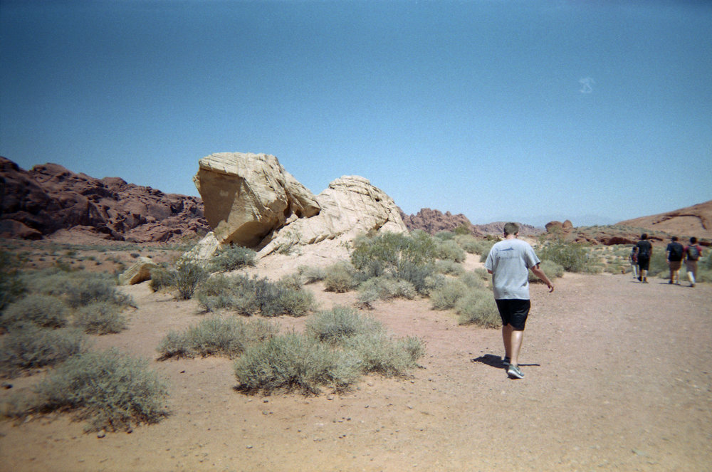 Vegas_Disposable012.jpg