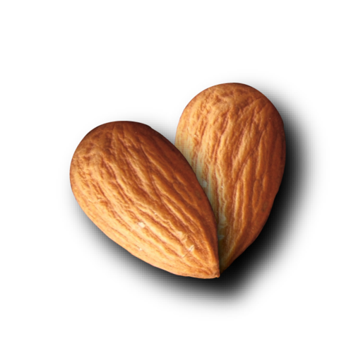 Almond Heart Logo Tenasparent Background.png