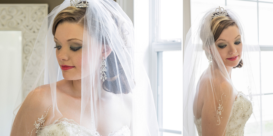Pictures of the veil with delicate details