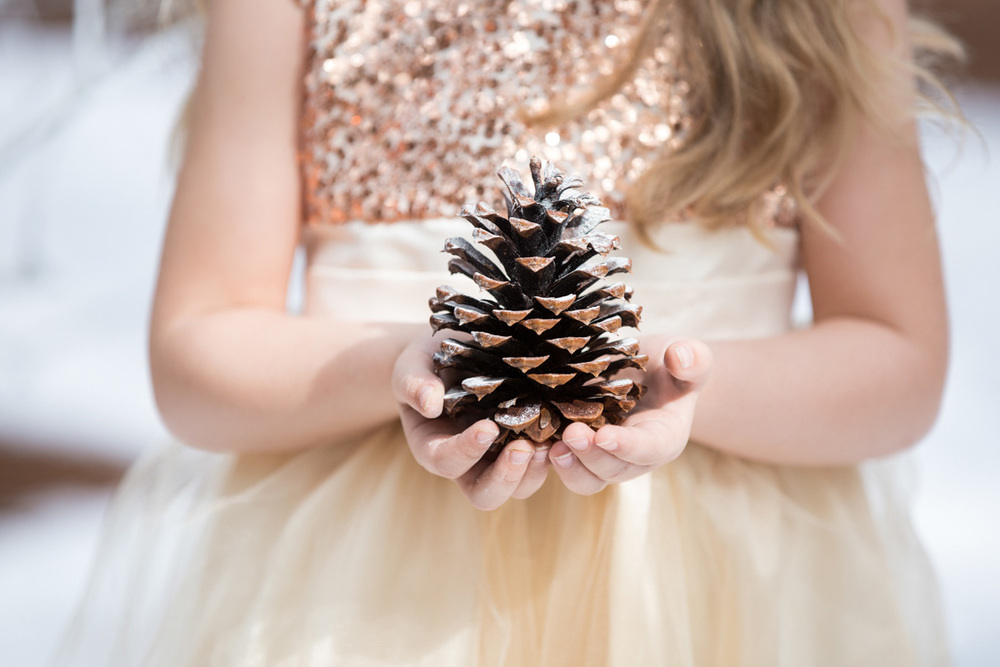 Close up shot of a girl holding a pinecone