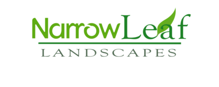 Lawn Care Maintenance
