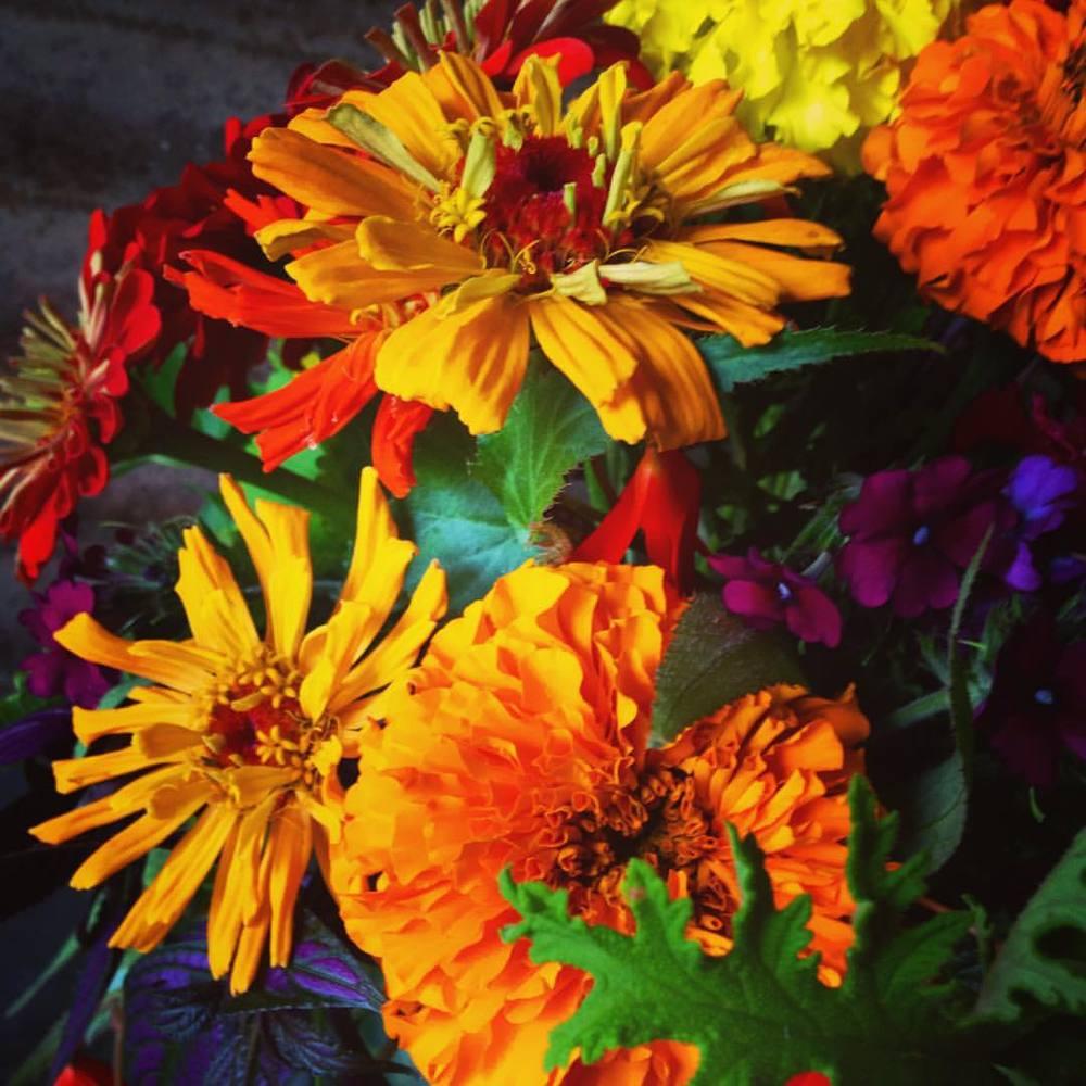 CSA bouquet 6.jpg