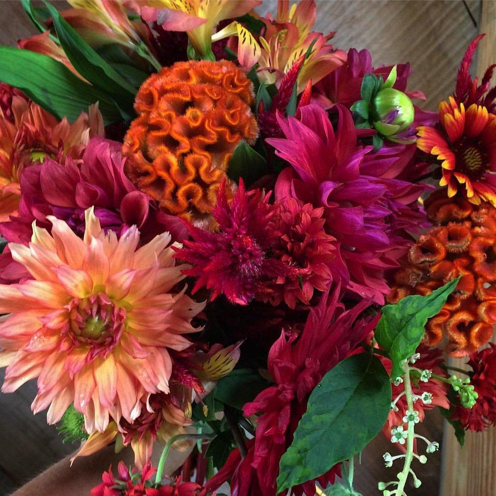 CSA bouquet Dahlias and Cockscomb.jpg