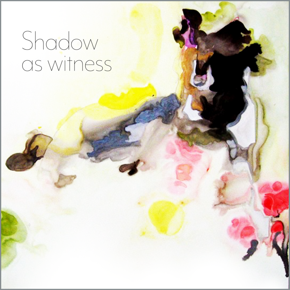 Shadow as witness