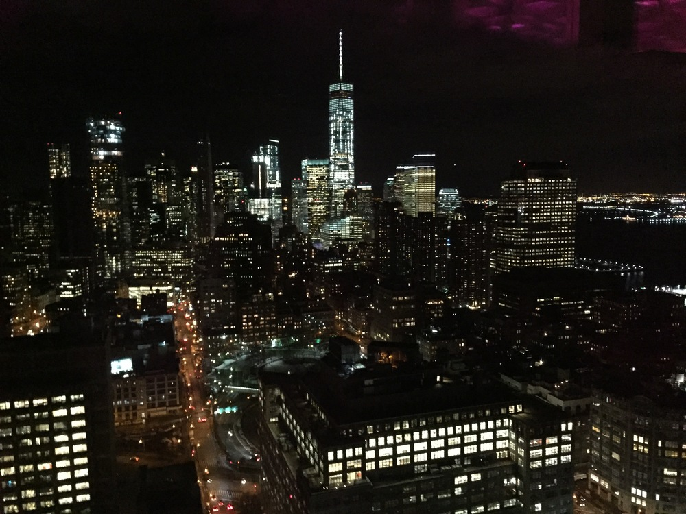 The New York skyline, and Freedom Tower, as seen from the 46th floor of the Trump Soho Hotel.