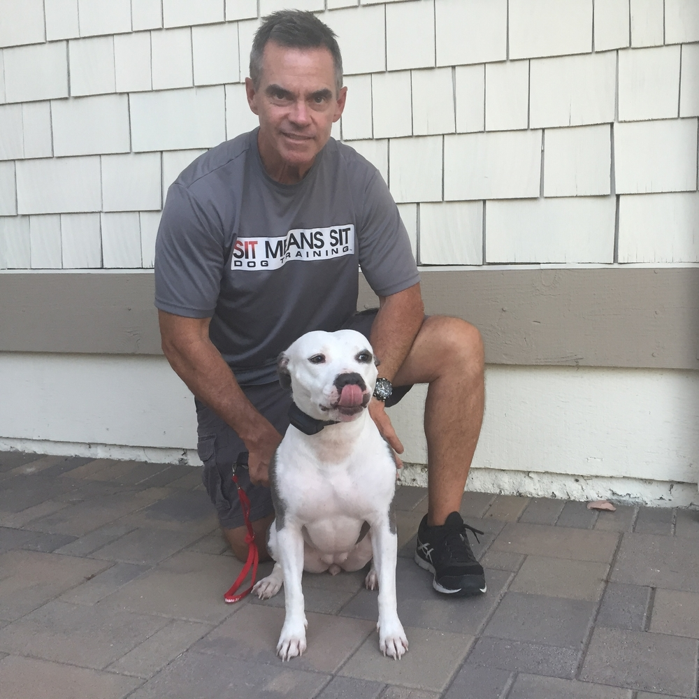 Tim, with my dog Rinny, is a dog behavior specialist with Sit Means Sit Dog Training.
