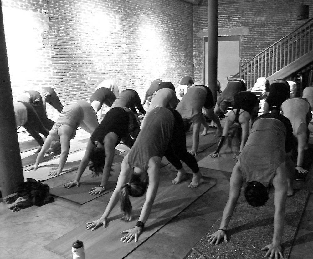 Yoga on Tap 4.jpg