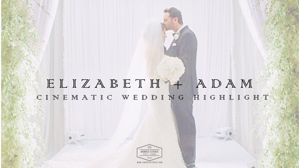 Elizabeth + Adam Online Video Cover Template.jpg
