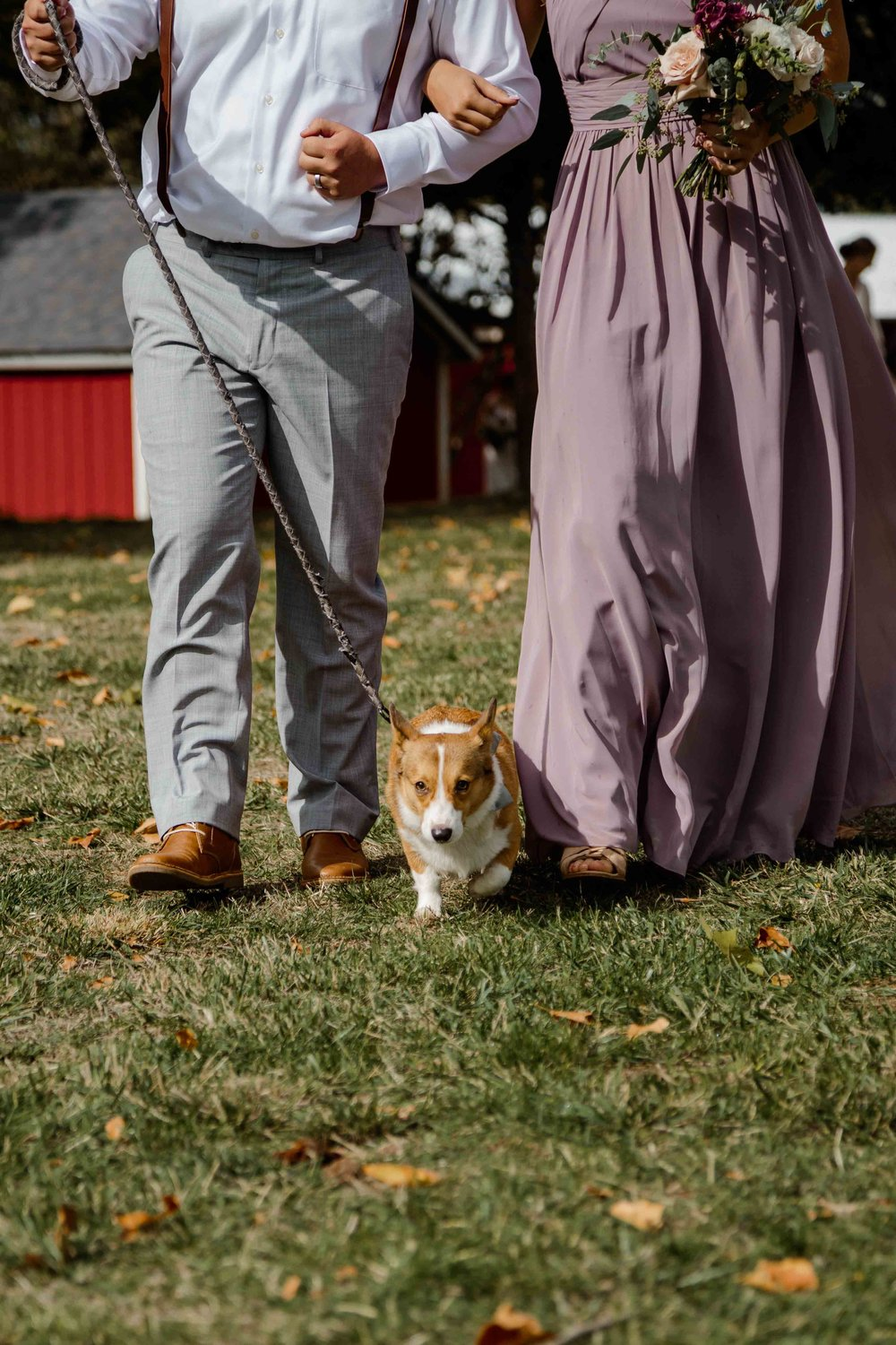 vineyard wedding summer fall oregon corgi rustic wedding-55.jpg
