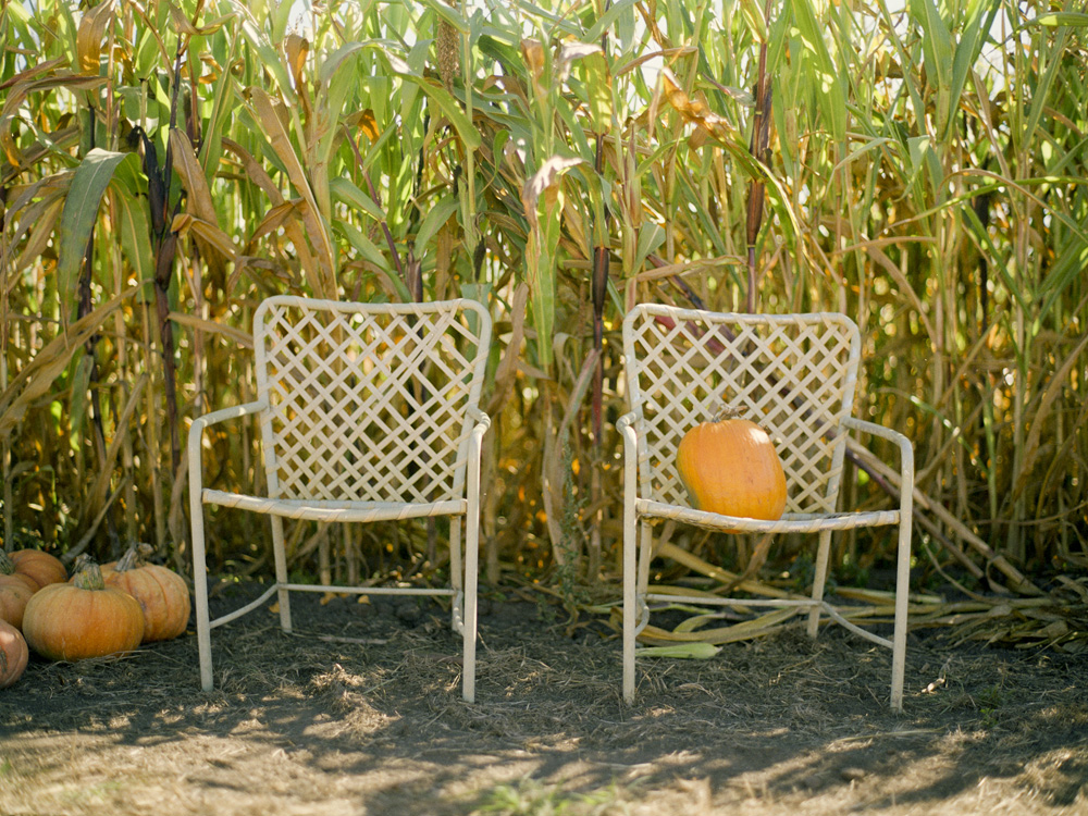 Chairs in Farmer John's Pumpkin Patch in Half Moon Bay