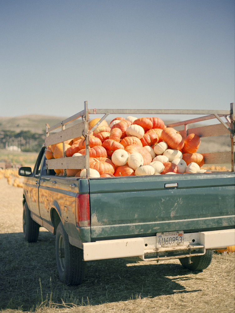 Truck Full of Pumpkins in Half Moon Bay