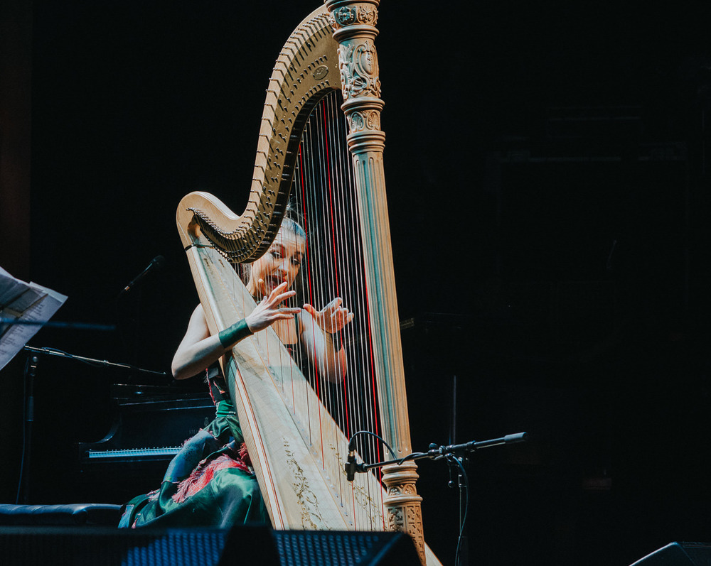 2_Joanna_Newsom_Vogue_Theatre_Timothy_Nguyen (3 of 9).jpg