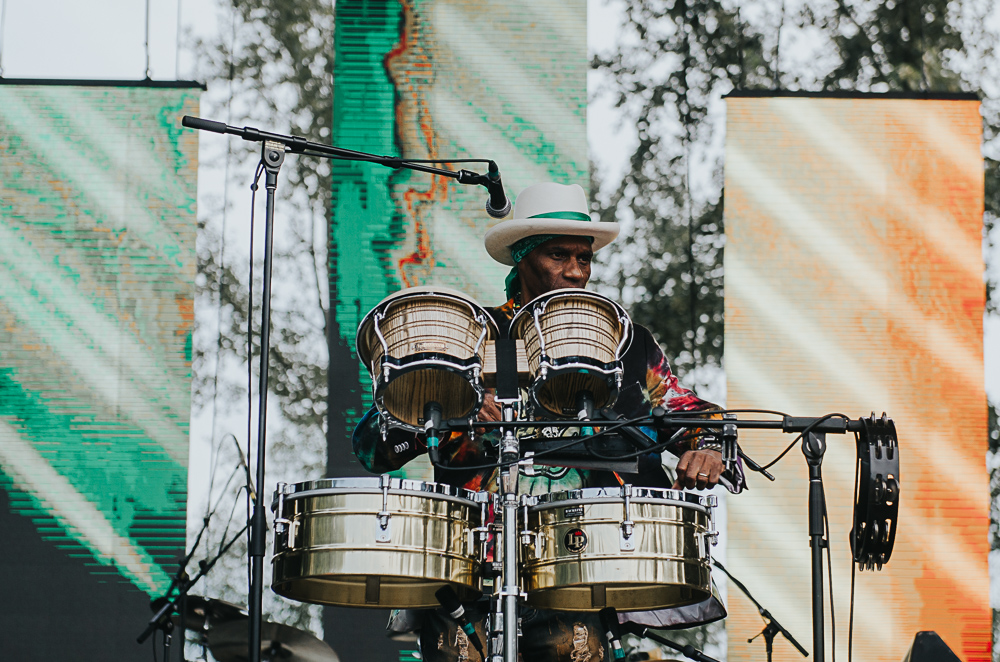 3_Cyril_Neville_Blues_And_Roots_2016_Tim-Nguyen (1 of 19).jpg