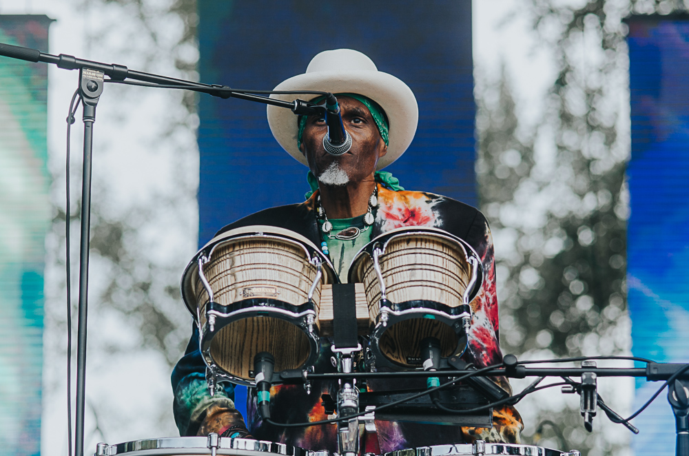 3_Cyril_Neville_Blues_And_Roots_2016_Tim-Nguyen (6 of 19).jpg