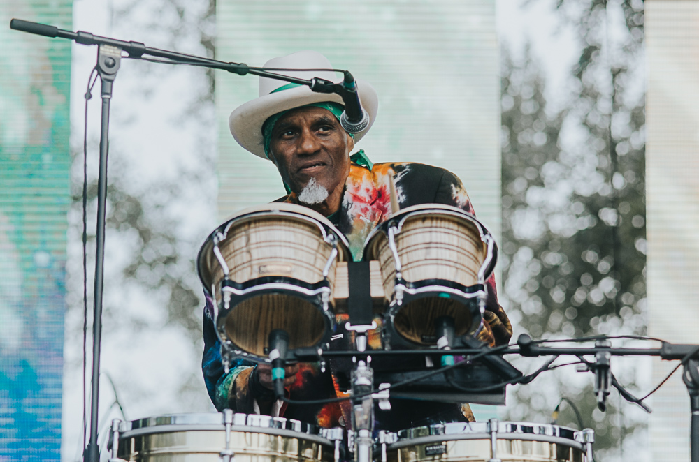 3_Cyril_Neville_Blues_And_Roots_2016_Tim-Nguyen (7 of 19).jpg