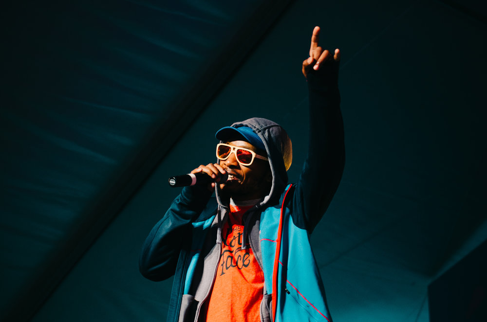 2_Del_the_Funky_Homosapien_Rifflandia-Timothy_Nguyen-20160917 (1 of 16).jpg
