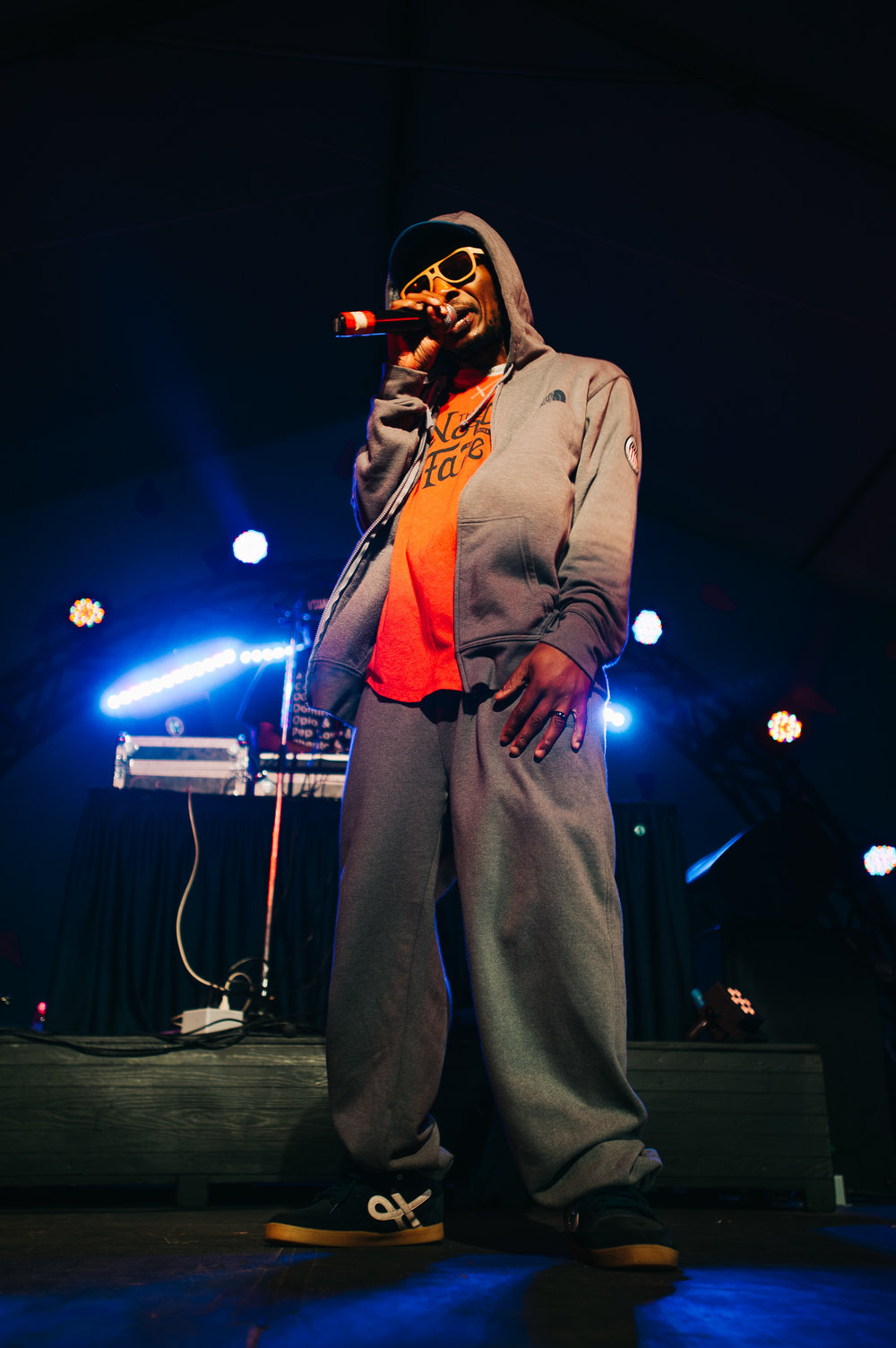 2_Del_the_Funky_Homosapien_Rifflandia-Timothy_Nguyen-20160917 (11 of 16).jpg