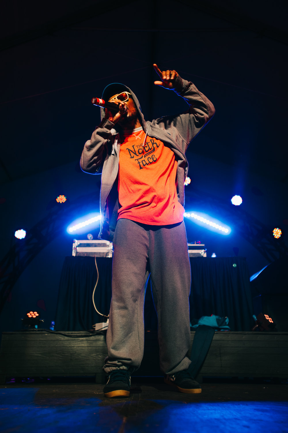 2_Del_the_Funky_Homosapien_Rifflandia-Timothy_Nguyen-20160917 (13 of 16).jpg