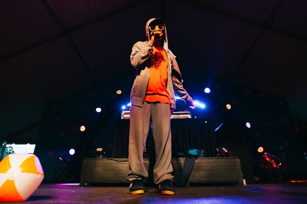 2_Del_the_Funky_Homosapien_Rifflandia-Timothy_Nguyen-20160917 (14 of 16).jpg