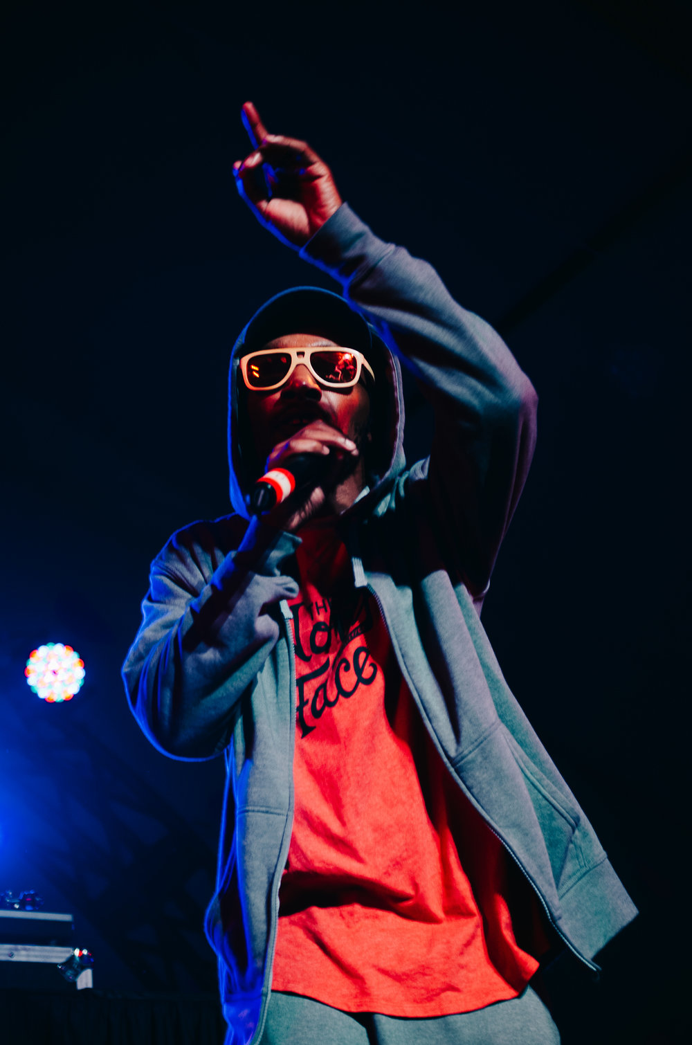 2_Del_the_Funky_Homosapien_Rifflandia-Timothy_Nguyen-20160917 (16 of 16).jpg