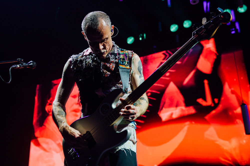 1_RHCP-Rogers_Arena-Timothy_Nguyen (32 of 38).jpg