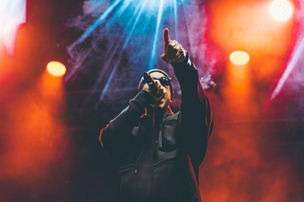 1_Ludacris-Snowbombing-Timothy_Nguyen-20170409 (7 of 20).jpg