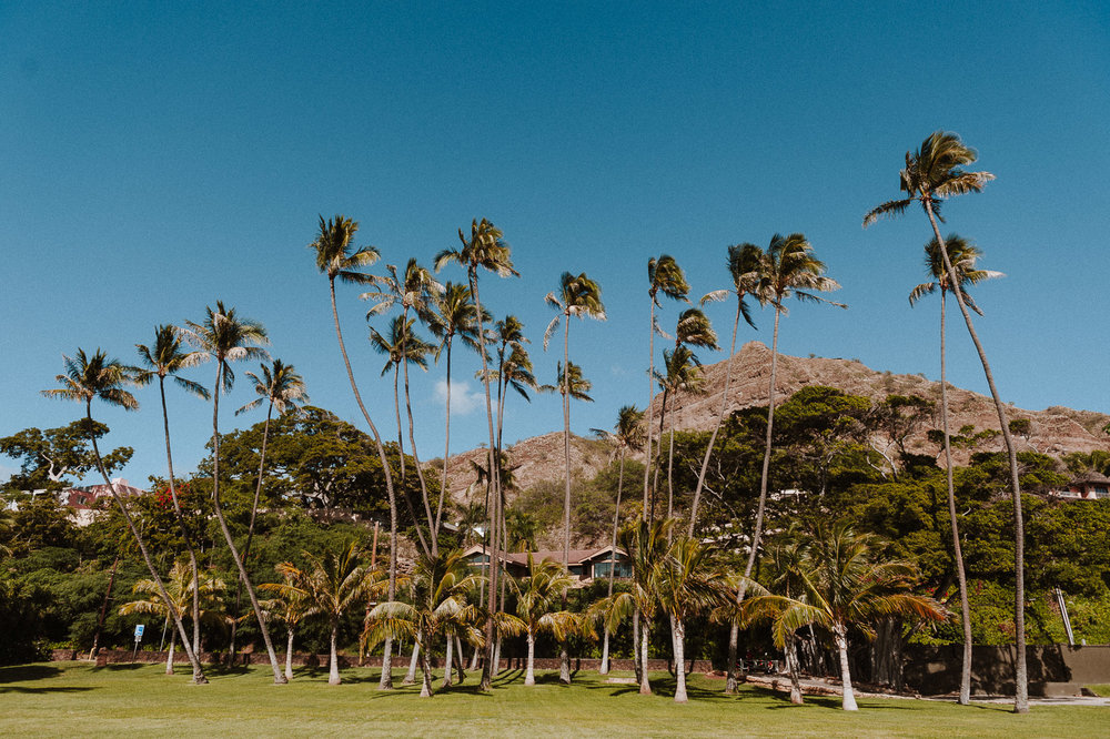 Hawaii-Web (22 of 100).jpg