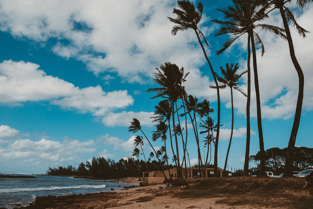 Hawaii-Web (52 of 100).jpg