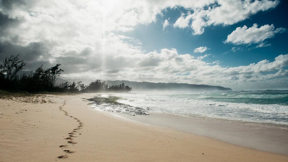 Hawaii-Web (54 of 100).jpg