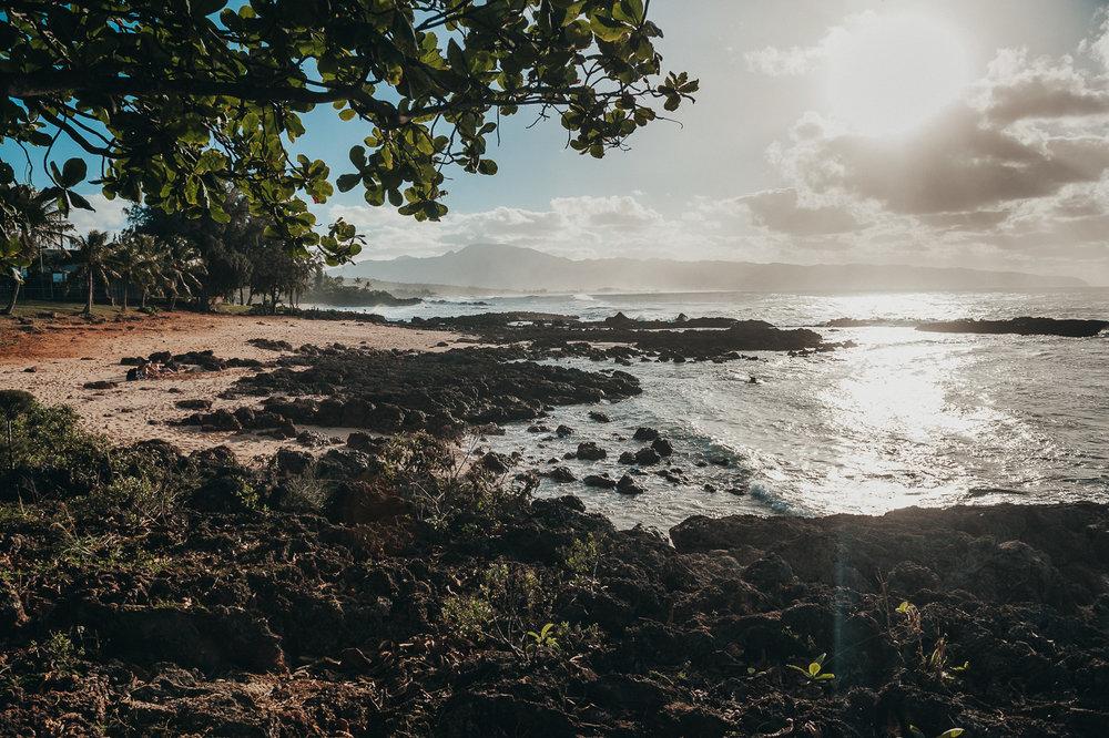 Hawaii-Web (61 of 100).jpg