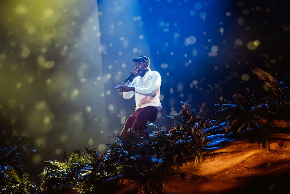 1_Tyler_The_Creator-Pacific_Coliseum-Timothy_Nguyen-20180126 (8 of 29).jpg