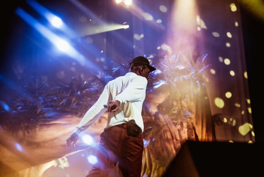 1_Tyler_The_Creator-Pacific_Coliseum-Timothy_Nguyen-20180126 (13 of 29).jpg