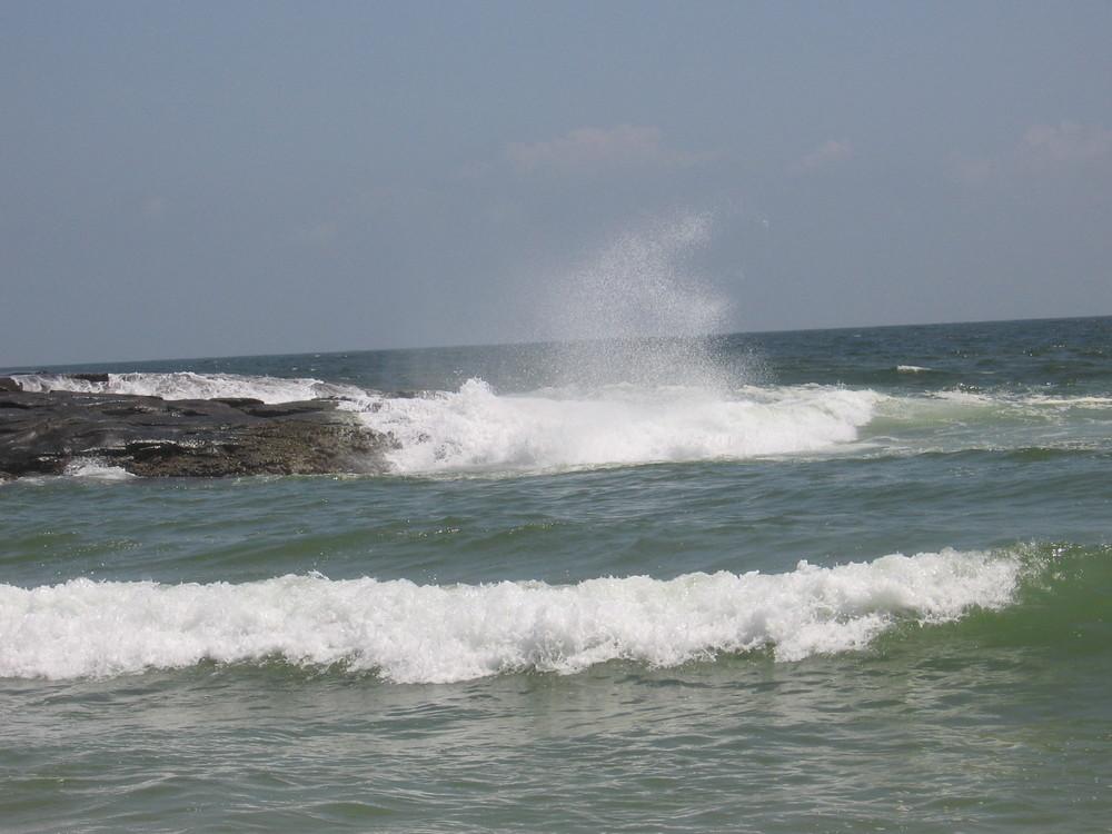 Kovalam Beach - Thiruvananthapuram