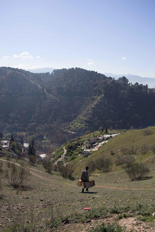 Granada - Gitano