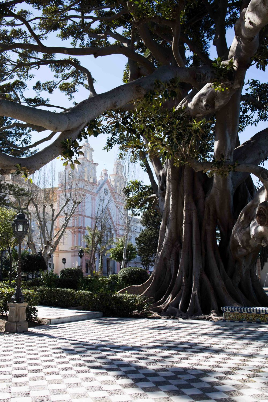 Cádiz - Antiguo