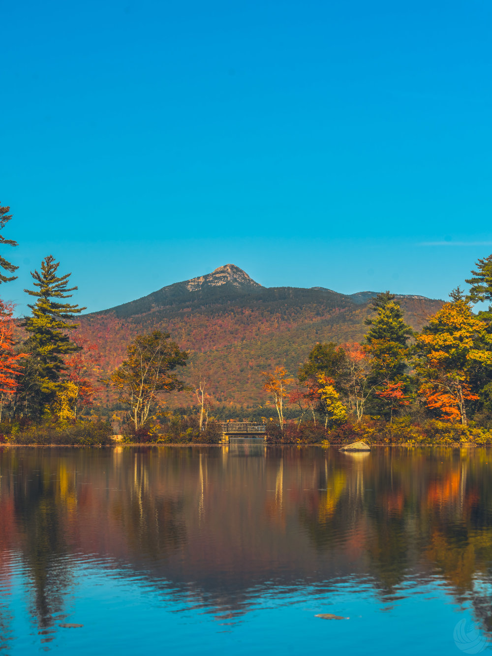 Chocorua2nd-56.jpg