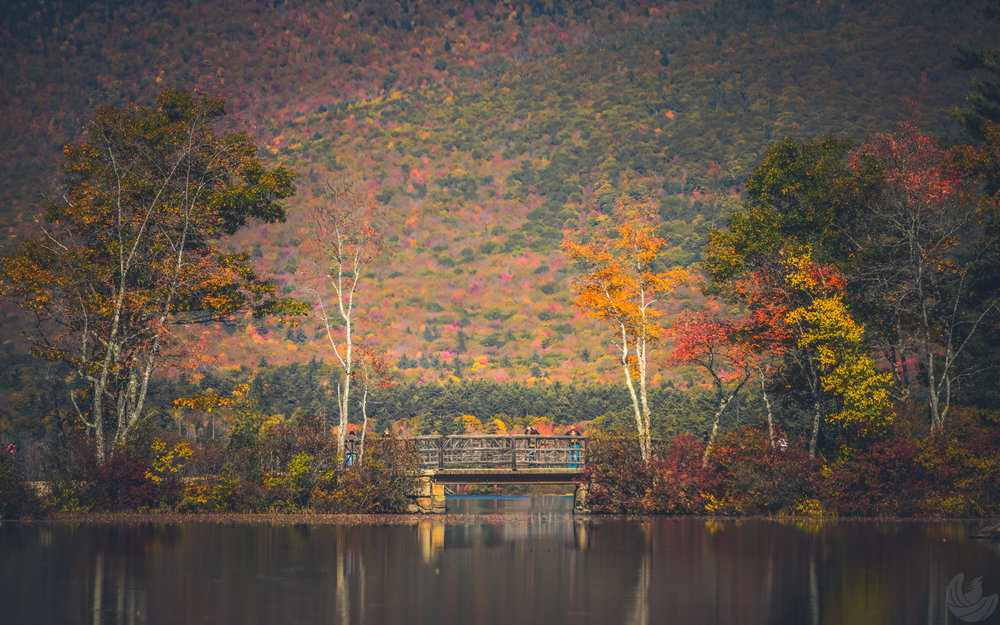Chocorua2nd-57.jpg