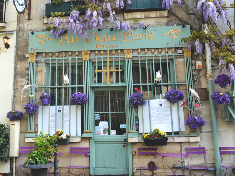 purplecafe.jpg