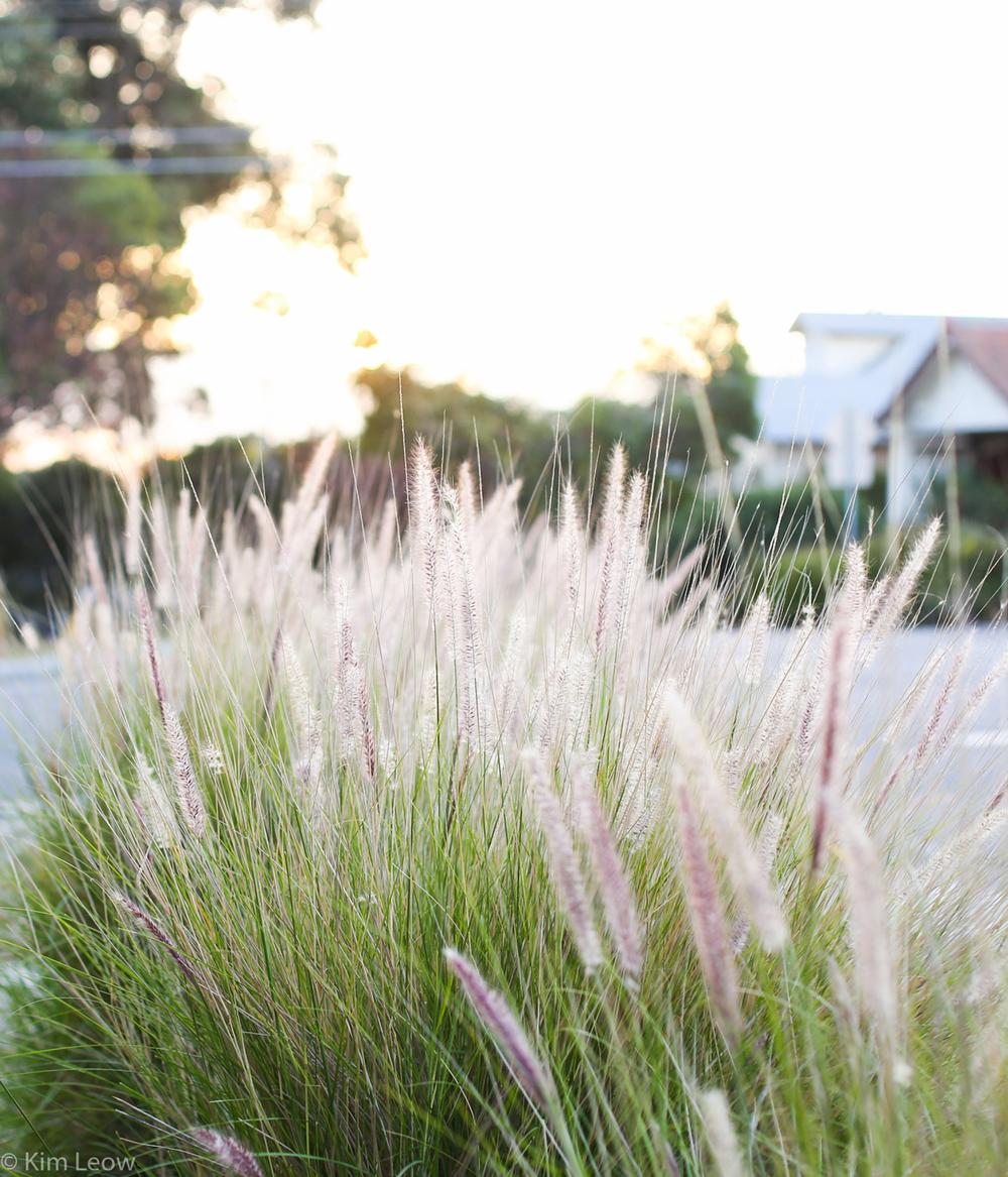 stripes_LVtwist_kimleow.com-6.jpg