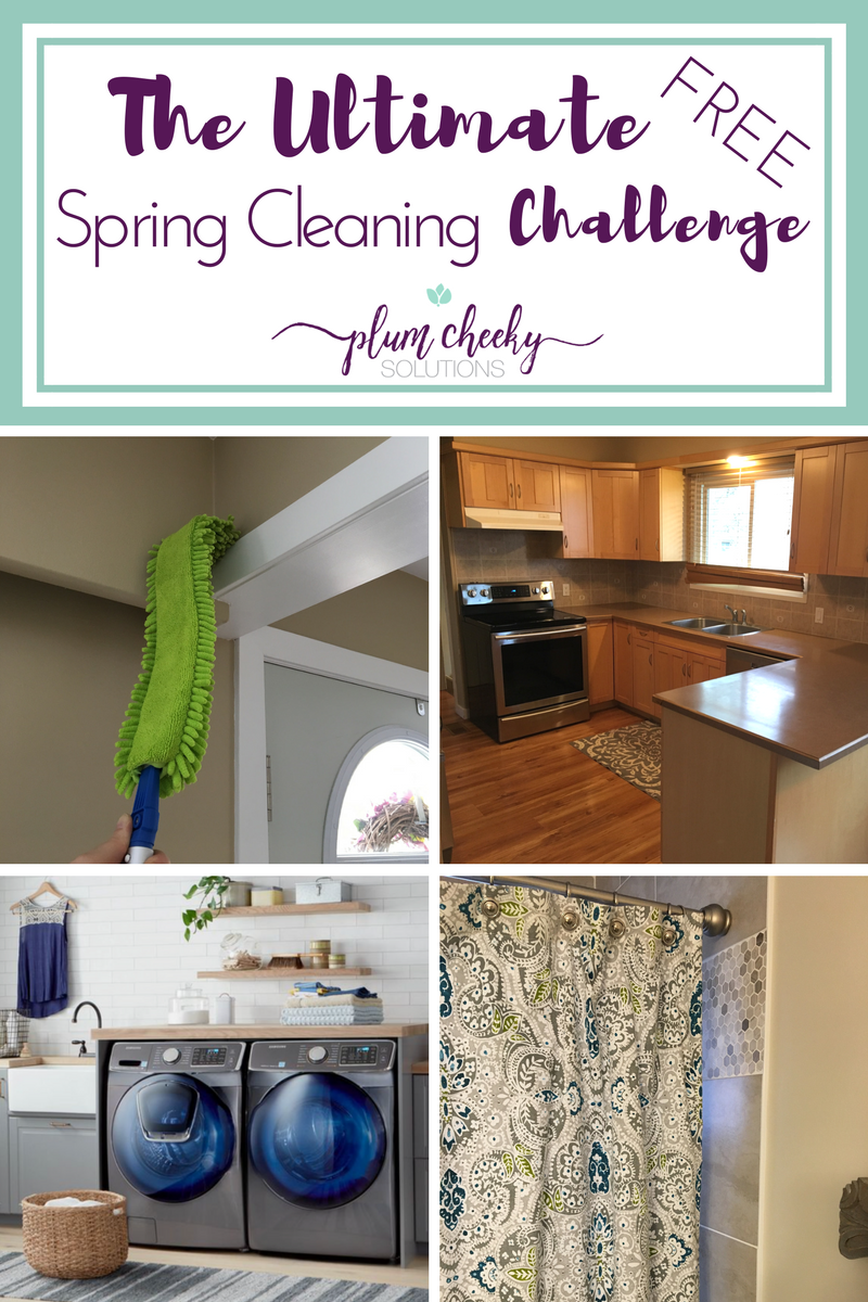 The Ultimate Spring Cleaning Challenge-Blog:Pinterest.png