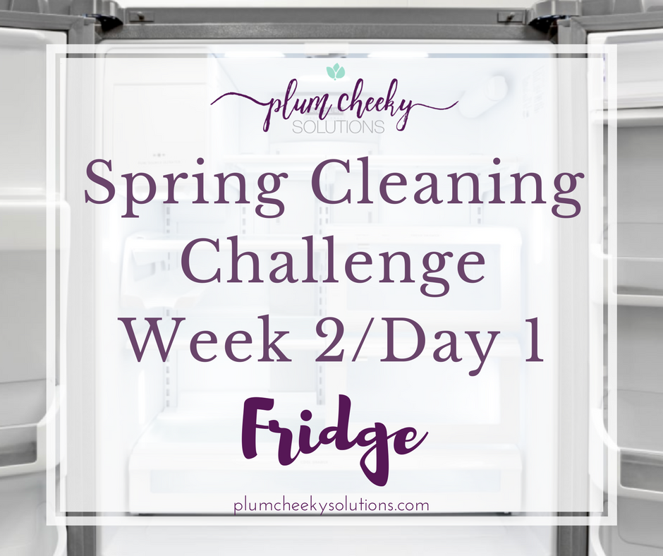 spring cleaning week 2 day 1